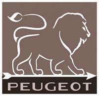 Mlýnek Peugeot na chilli papričky Oleron tmavý