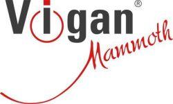 Dvouplotýnkový sklokeramický vařič VIGAN SKV2X - nerez VIGAN Mammoth