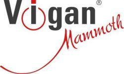 Náhradní válečky k Mani-Pedi VIGAN MP1 - VIGAN 3VMP1 - jemný a hrubší na paty, na nehty, 3 ks VIGAN Mammoth