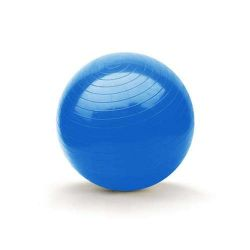 Gymnastický míč 65cm SPORTWELL Banquet